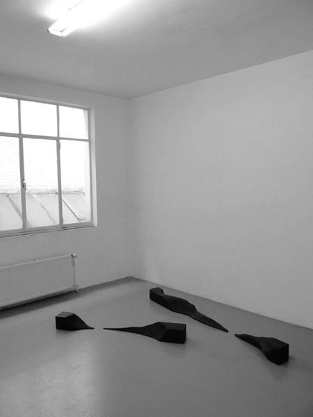 Sans titre, 2010 / Bois, peinture acrylique et cirage / Dimensions variables