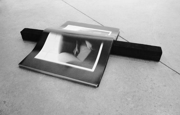 La Part Maudite (Richard Kern), 2012 / Affiches noir et blanc, poutre en bois, encre de Chine