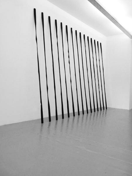 Sans titre, 2009 / Bois et peinture acrylique / Dimensions variables